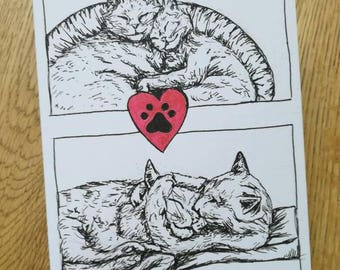 My Purrfect Partner, A hand illustrated, Valentines Card for Cat Lovers