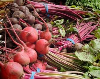 Fresh Root Vegetable - Healthy Food Photograph - Kitchen Art Decor - Wall Decor - Vegetable Art - Nature Food Photograph