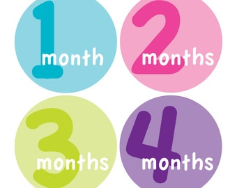 12 Monthly Baby Milestone Waterproof Glossy Stickers - Just Born - Newborn - Weekly stickers available - Design M014-05