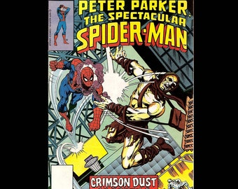 The Spectacular Spider-Man No. 30 - Marvel Comic Book c. May 1979