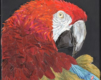 Magazine Collage Red Macaw Parrot Canvas