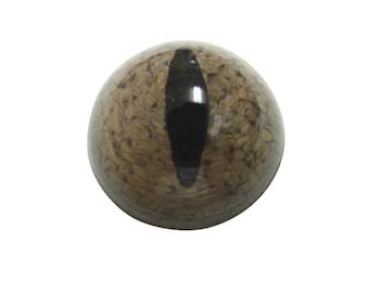 Brown Reptile Eye Magnet