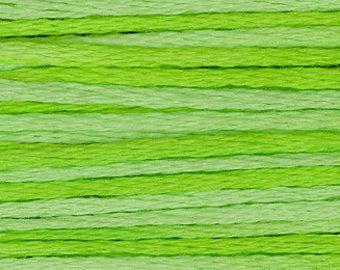 2203 Chartreuse - Weeks Dye Works 6 Strand Floss