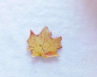 Yellow  leaf magnet