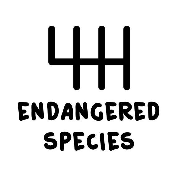 Endangered Species stick shift Vinyl Decal // Removable