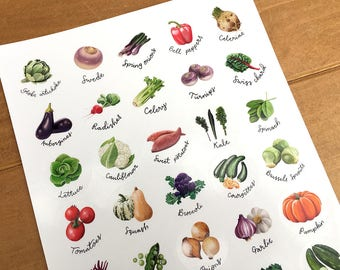 Vegetable stickers, A4 sheet of 35 with gloss finish.