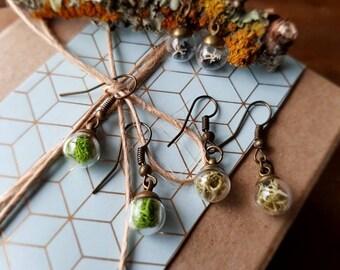 Tiny Terrarium Drop Earrings