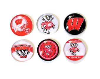 Wisconsin Badgers Magnets + Tin / Fridge Magnets / Glass Magnets / Refrigerator Magnets / WI Badgers Magnets / Wisconsin Badgers Decor