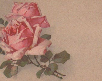 Two Pink Roses Original Antique Art Postcard