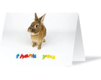 Thank You Card, Bunny Rabbit, Greeting Card, Thank You Card, Bunny Card, Rabbit Card, Bunny Rabbit Card, Cute Card, Pet Card, Thanks Card