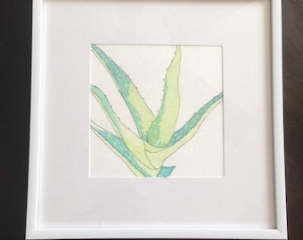 Aloe Watercolor #2