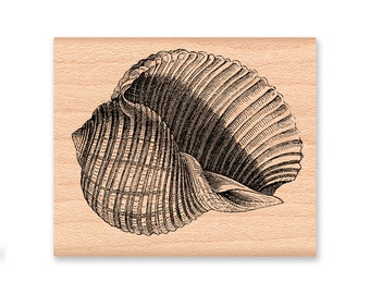 SEA SHELL Rubber Stamp~Large Shell~Ocean or Nautical Decor or Theme~Summer on the Beach~Wood Mounted Stamp~Mountainside Crafts (48-28)