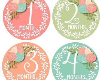 FREE GIFT, Baby Girl Month Stickers, Monthly Baby Stickers, Photo Prop, Floral Roses  for Newborn Bodysuit, Milestone Stickers
