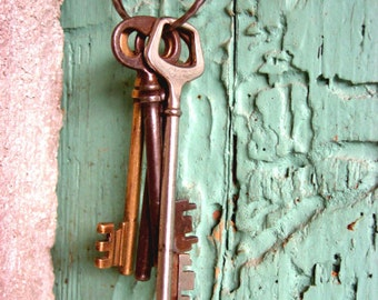 Pink Green Wall Art, Entry Way Decor, Antique Skeleton Keys Print, Cottage Chic, Mint Green Art, Old Wood Door 'Keys to the Winery'