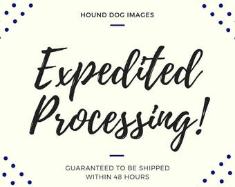 Expedited Processing - Guaranteed to be shipped in 48 hours!