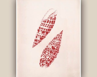 Seashell  Print in Garnet red,  Vintage Mitra shell print, Coastal Living, Marine Wall Decor, Nautical Art Print, Botanical Art