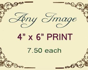 Any 4x6 Print, Your Choice, Anthropomorphic, Animal Art Print, Art Sale, Unique Animal Art, Photo Collage, Unique Gift, Funny Animal