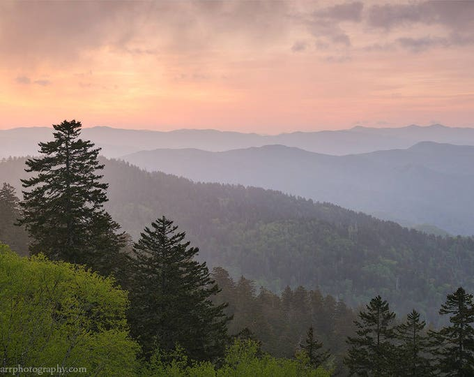 Pink Sunrise at Clingmans Dome