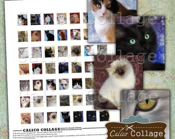 Painted Cats, Kittens, Scrabble Tile Images, Digital Collage Sheet, Scrabble Tile Size, Printable Sheets, Printable Sheet, Collage Sheets