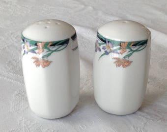 Vintage Royal Dalton Fine China Salt & Pepper Shakers