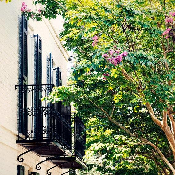 Art, Photography, City Scene, Charleston Print, Summer In The City Image, Balcony Print, Flower Photo