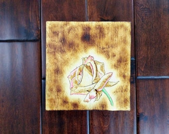 Woodburning of rose with colored highlights on birch plywood