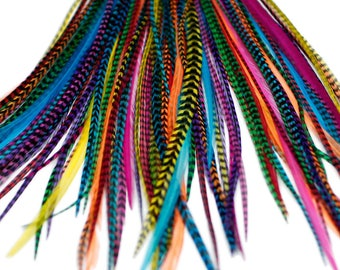 20 Real Feather Hair Extensions : B-Grade Mixed Brights + Rings/Loop