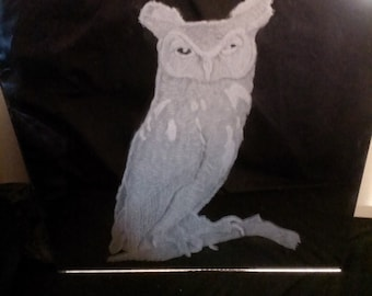 "Screech Owl engraved on a 12"" by 12"" mirror"