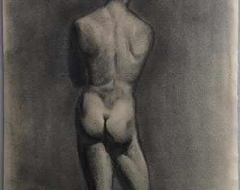 nude study, drawing in pencil and graphite on ivory paper stick