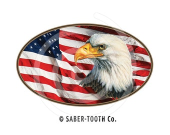 Eagle and USA Flag Oval Decal Sticker