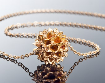 natural jewelry, Velancian seed in gold 24K, nature jewelry