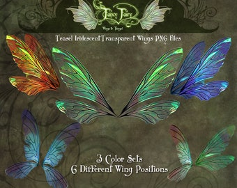 Iridescent Teasel Fairy Wings Transparencies PNG Files Overlay