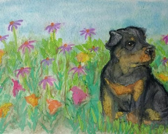Watercolor Print- Rottweiler in the Flowerbed- print
