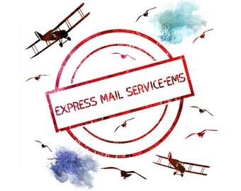 EMS-Express Mail Service, Worldwide Express Mail Service