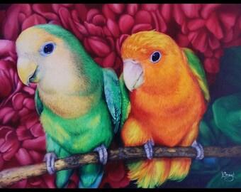 Parrot by Ellen Olson