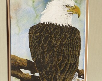 Bird, America, Blue, Brown, White, Yellow--Bald Eagle Watercolor Painting