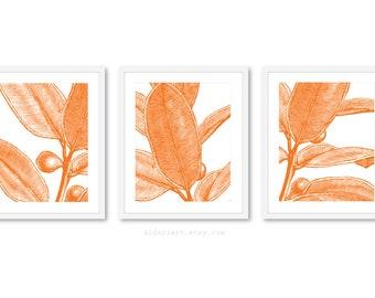 Feuille Wall Art, estampes de plante, feuille d'estampes, imprime feuille moderne, ensemble de 3 estampes, couleur personnalisée, tous droits réservés