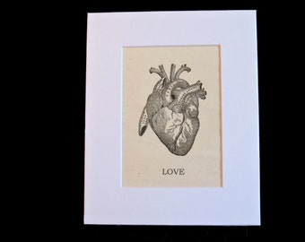 Anatomical heart, LOVE, Macabre, spooky decor, goth, curiosity, medical, unique gift, human anatomy