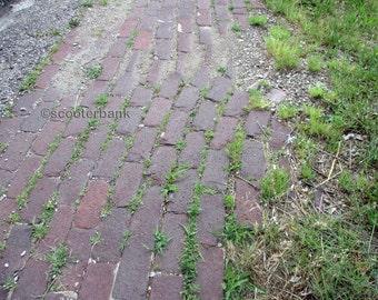 Brick Street Instant Download Digital Photography