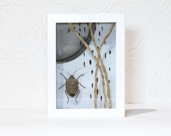 Shadow box Art, 3D Clay Large Bug, Fake preserved insect, abstract art, natural science