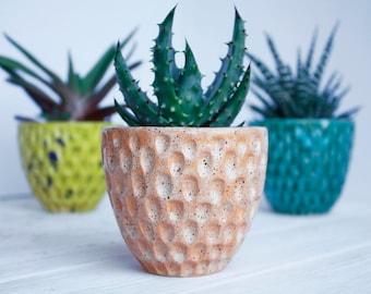 Beige Succulent Planter - Modern plant holder - Ceramic Planter - Air Plant Holder - Modern Succulent Pot - Cactus Planter  Indoor Gargening