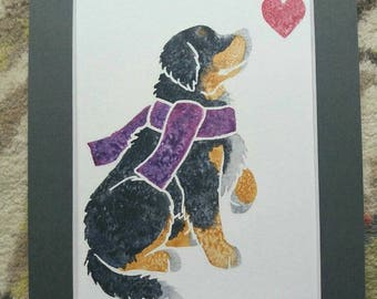 """BERNESE MOUNTAIN DOG - Original 10x8"""" mounted watercolour picture of a Bernese dog, by Yorkshire artist Jess Chappell"""
