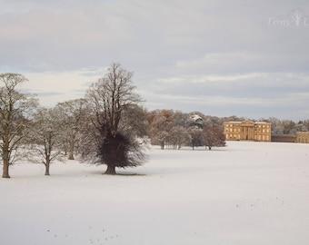 Attingham Park in the snow