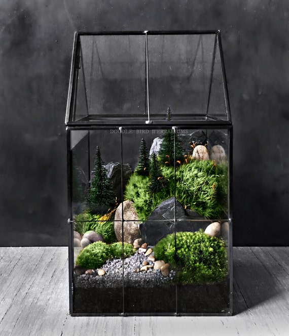 Large Greenhouse Moss Terrarium With Landscape Scene In