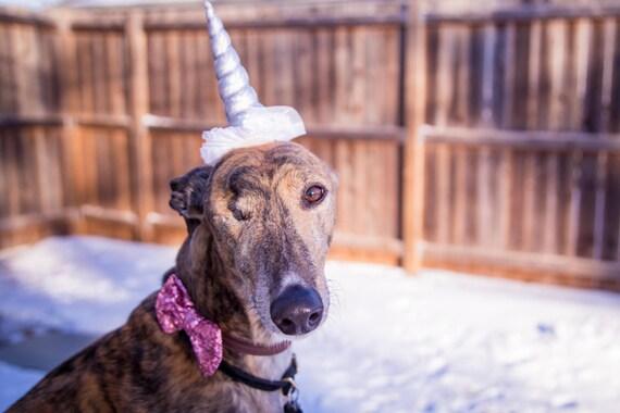 Unicorn Headband for Dog || Pet Unicorn Costume || Dog Unicorn || Unicorn Dog|| Dog Unicorn