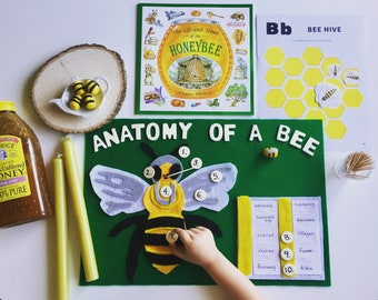 Kit: Anatomy of a Bee