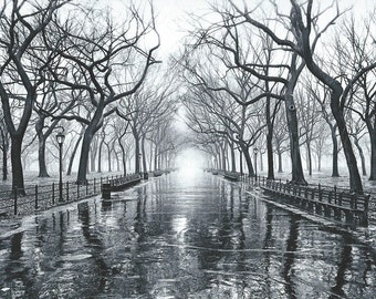NYC, Central Park, 1994. An Original Photo Art Card.