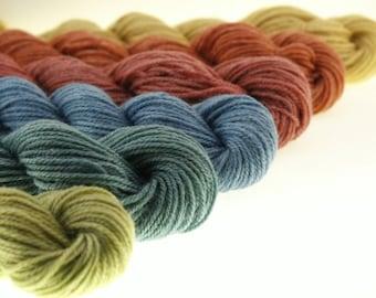 Mini Skein DK or Fingering Yarn  - Folk Art - 600 yards