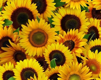 Elizabeths Studio - Sunflowers - Packed - Yellow - Fabric by the Yard 487E-YLW