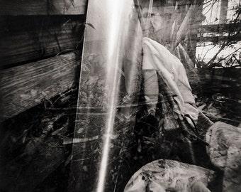 Holga Photography, Toy Camera, Fine Art Photography, Black and White Photography, Abstract Photography, Modern Art, Wall Art, Face